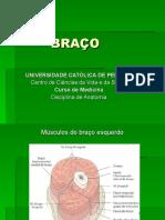 17. BRAÇO