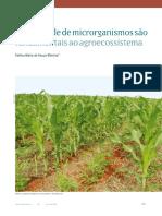 VA Diversidade de microorganismos em SPD
