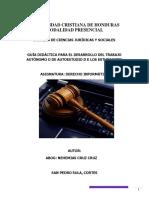 Guia Derecho Derecho Informatico Sp (1)