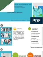 Presentación- AREAS DE EJERCICIO PROFESIONAL