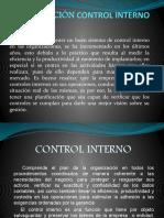 3.1.5 Control Interno 1