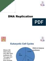 DNA replication_NR_2011(1)