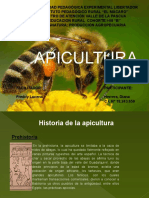 APICULTURA HIDROCLASE