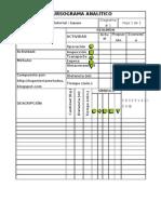 Formato de Cursograma Analitico
