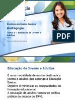 Tema 3 – Educação de Jovens e Adultos