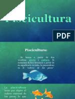 piscicultura-150603000846-lva1-app6891