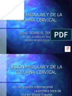 FINAL SPINAL CORD LESIONS II