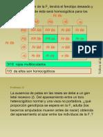 18 Problemas de Genetica Resueltos_parte14