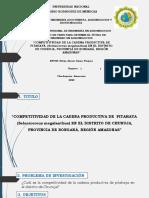 Proyecto de Tesis( Exp. Final)