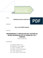 ESTUDIO DE MERCADO-CIUDAD ICA