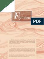 Figueira Cat2020 PDF