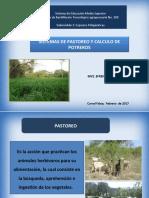 Sistema de pastoreo
