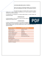 leucemia-mieloide-aguda-y-cronica