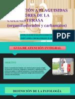 EXPOSICIÓN A PLAGUISIDAS INHIBIDORES DE LA COLINESTERASA (