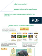 4.- Cómo Son Los Vertebrados; Mamíferos y Aves