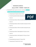 Plan de Desarrollo GERENTE COMERCIAL ENERO 2021