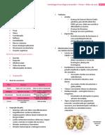 Amandita - Semio neurológica