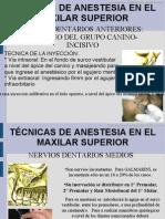 Terapeutica Farmacologica - Anestesia - Maxilar Superior - CD Carlos f Ruiz Laos