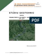 STUDIU GEOTEHNIC DJ106