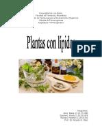 Plantas Con Lipidos