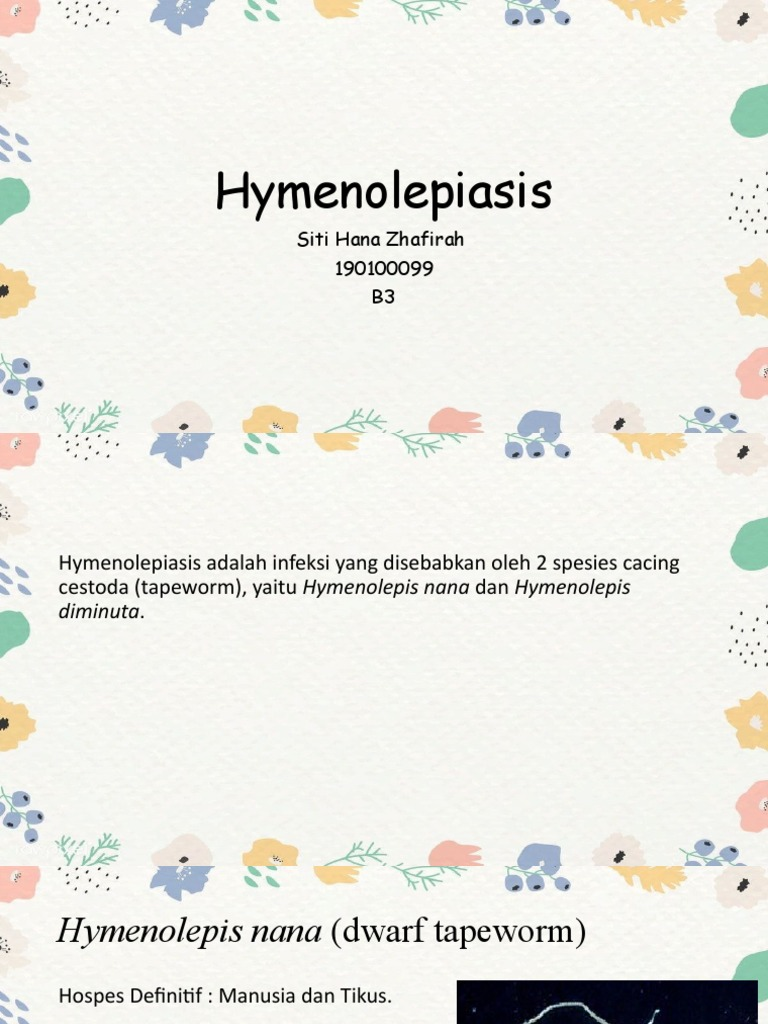 hymenolepidosis patogenezis)