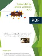 Capacidad de Intercambio Catiónico (CIC)