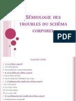 Sémiologie des troubles du schéma corporel