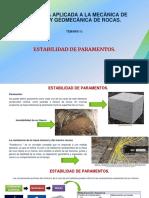 T_5. Estabilidad de Paramentos - Fabiola Fidelibus