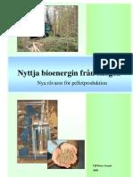 Nyttja bioenergin från skogen 2008 SE Ulf-Peter Granö