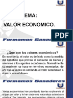 2- VALOR ECONOMICO
