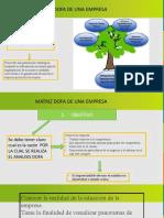 Presentación Matriz Dofa