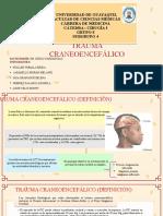 Trauma Craneoencefálico g8 Subg4 (1)