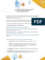 Paso 1 Ejercicios neuropsicologia