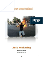 Arab Unrest