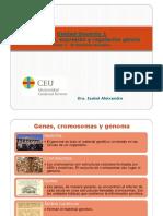 Tema 2- Genoma Humano