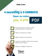 Extrait - E-marketing & E-commerce