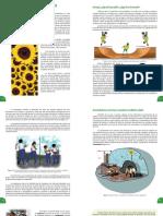 Guía Pedagógica #4 - Biología 3° Año (A)