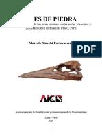 Stucchi 2020 - Aves de Piedra