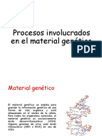 Procesos involucrados en el material genético
