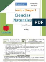Plan 6to Grado - Bloque 1 Ciencias Naturales (2015-2016)