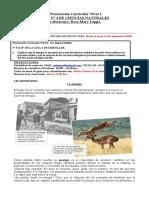 GUÍA N°4 - CIENCIAS - 6TO - PRIORIZADA PIE