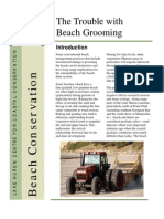 Beach conservation - beach grooming