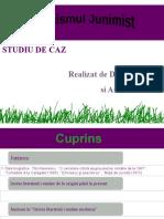 criticismuljunimist-100119094359-phpapp02
