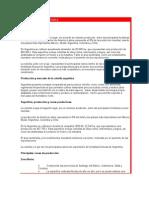 PRODUCCIÓN DE CEBOLLA