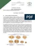 Roteiro 7 - Medula Espinhal