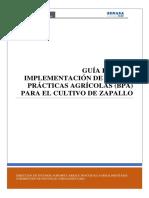 Guia-BPA-ZAPALLO