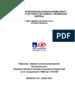 INFORME INTERVENCIÓN EN RIESGO BIOMECANICO CANO JIMENEZ ESTUDIOS