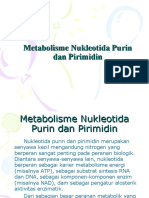 Metabolisme Purin Pirimidin