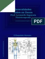 Osteologia_ossos