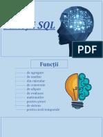 Tema 7 Functii standarde SQL (2)